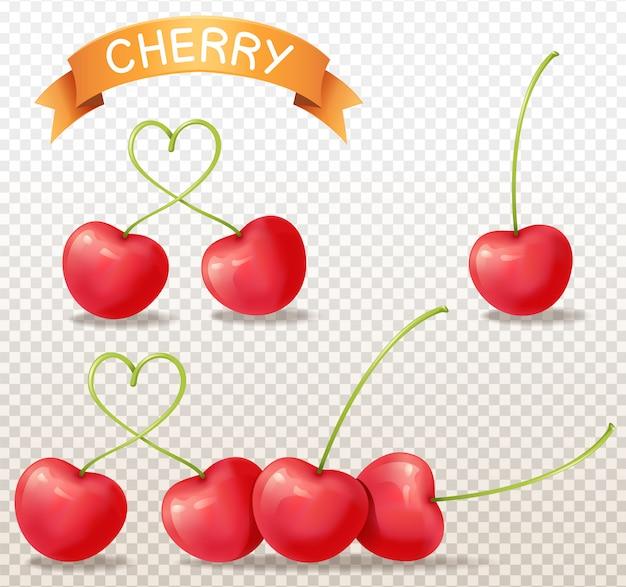 Cherry realistic on transparent background Premium Vector