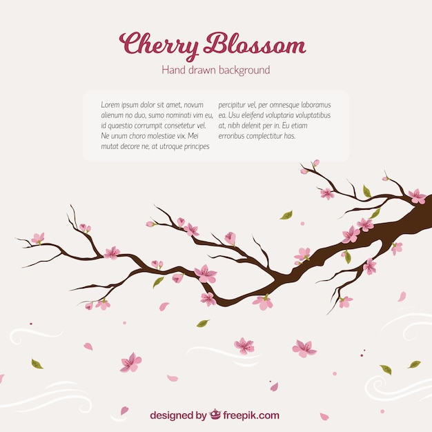 Cherry tree branch background Free Vector