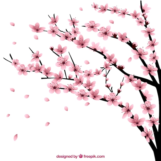 cherry tree with flowers vector | free download