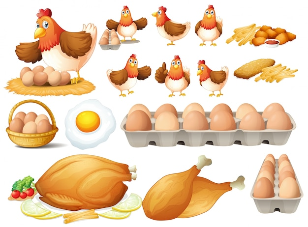 Chicken and different types of chicken products Free Vector