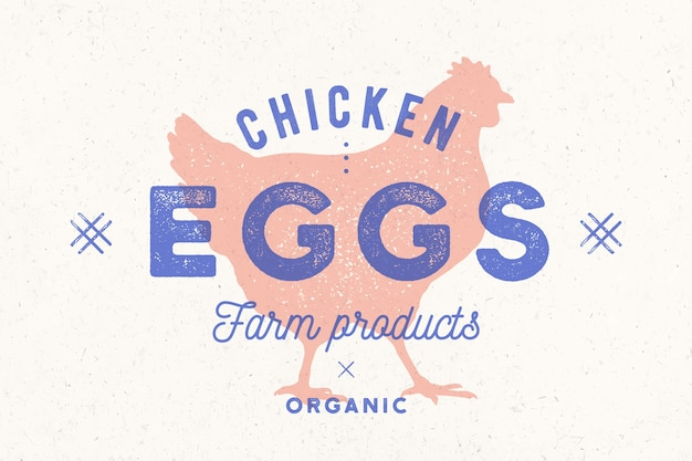 Chicken eggs. vintage hand drawn logo, retro print, poster with shilouette chicken, rooster. Premium Vector