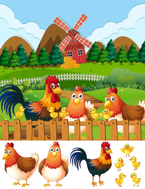 Chicken family at farmland Free Vector