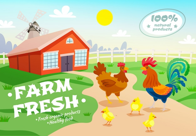 Chicken farm advertising background Free Vector