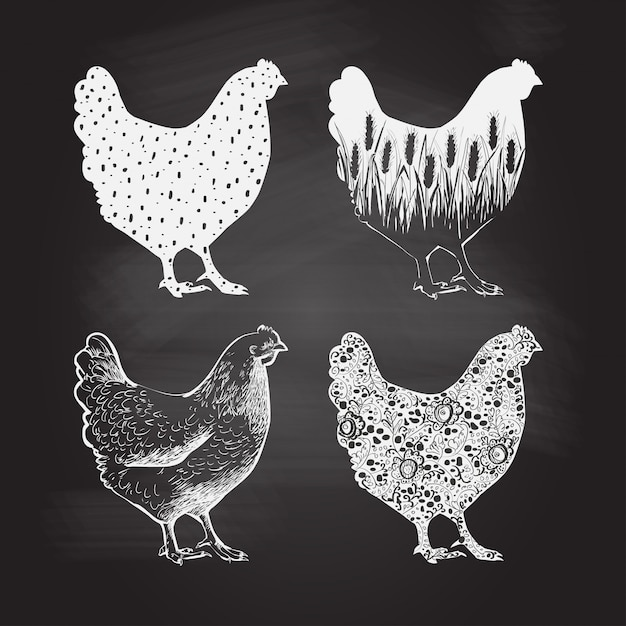 Chicken logo. vector illustration in vintage style Premium Vector
