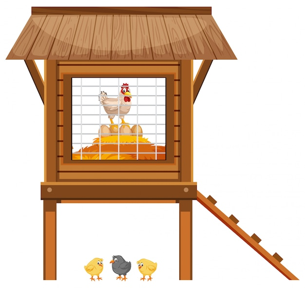 Chickens in the chicken coop on white background Premium Vector