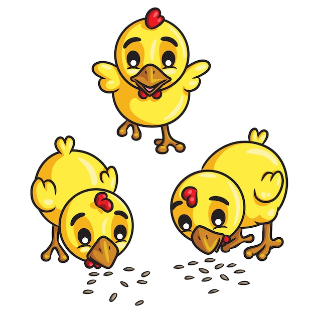 Chicks eat seeds cartoon Premium Vector