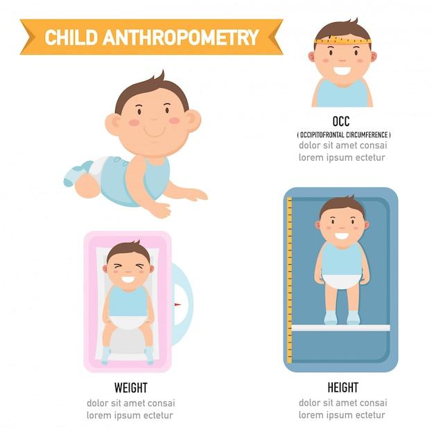 Child anthropometry infographic Premium Vector