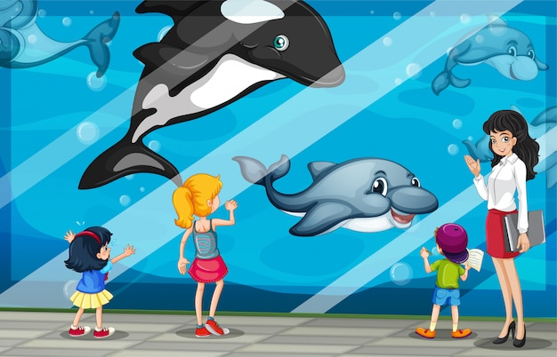 Children looking at dolphins at the aquarium Free Vector