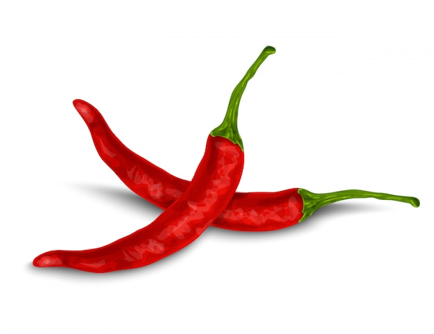 Chili pepper isolated on white Free Vector
