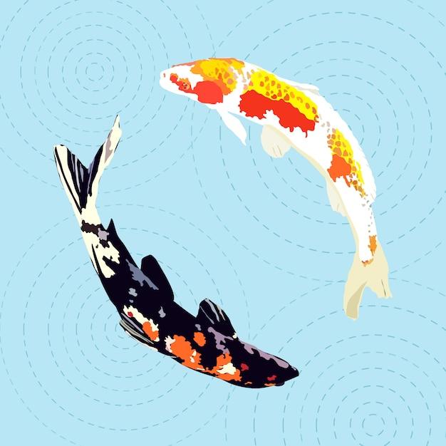 Chinese carp, japanese koi fish Premium Vector