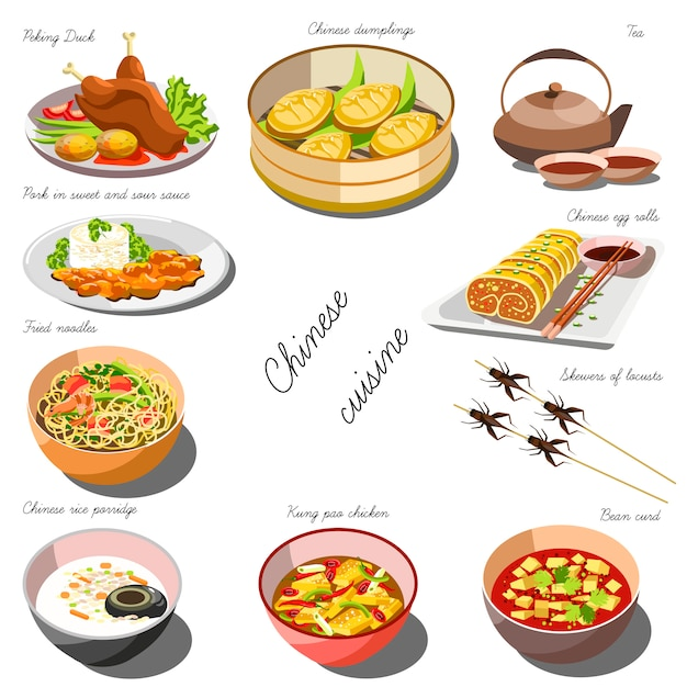 Chinese cousine set. collection of food dishes Premium Vector