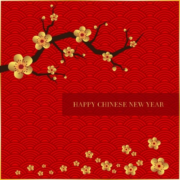 Chinese new year background Free Vector