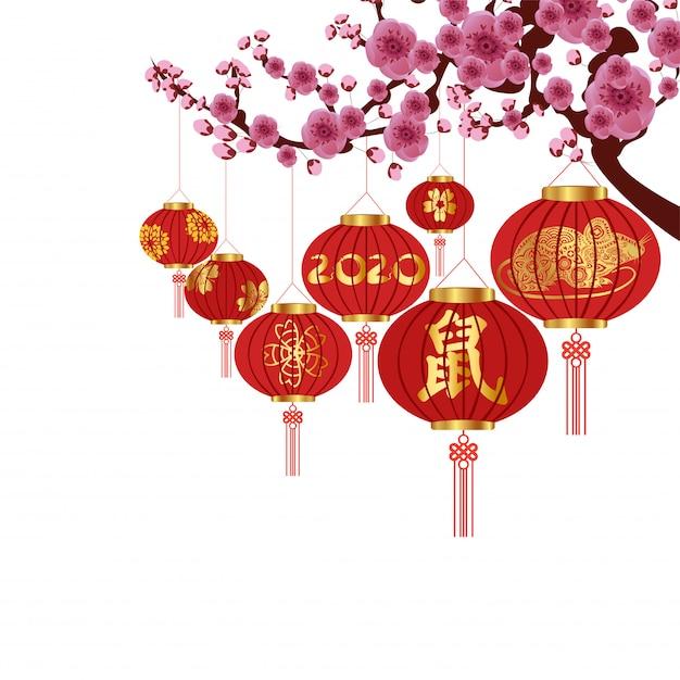 Chinese new year decoration   Premium Vector