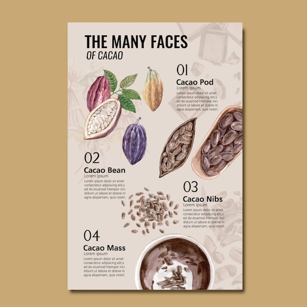 Chocolate ingredients watercolor with cocoa branch trees, infographic, illustration Free Vector
