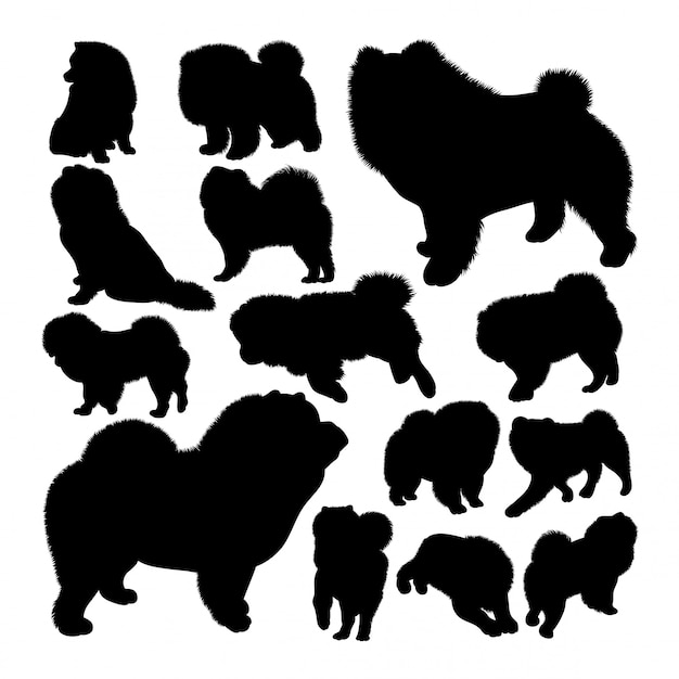 Chow chow dog animal silhouettes Premium Vector