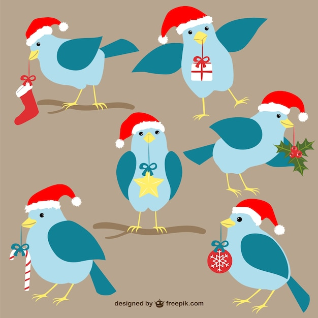 Christmas birds cartoons