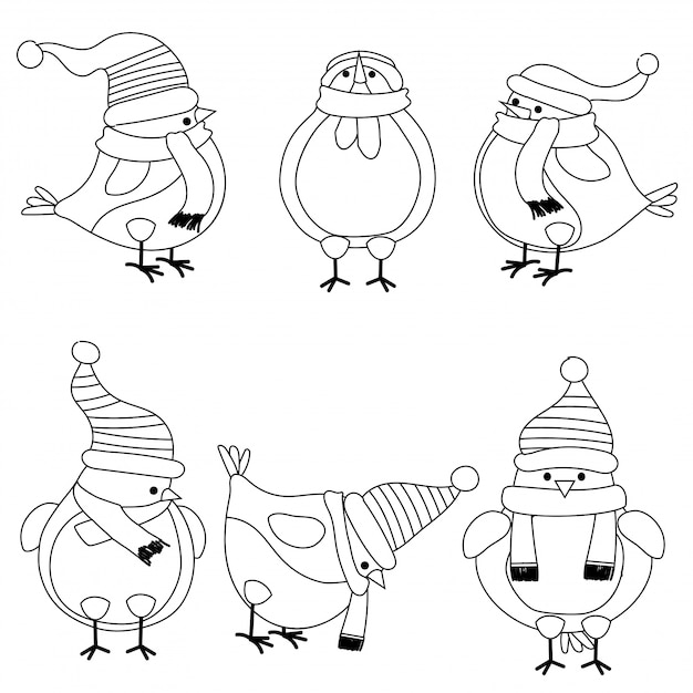 christmas birds collection for coloring book premium vector