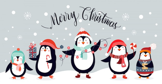 christmas card with cute penguins isolated on an winter. Black Bedroom Furniture Sets. Home Design Ideas
