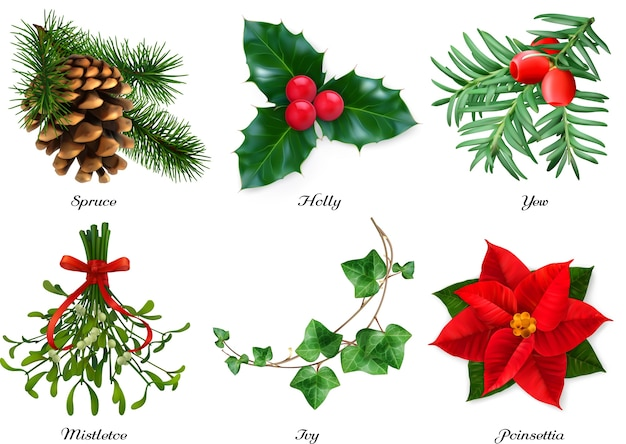 Bộ đồ trang trí Giáng sinh cao cấp Vector