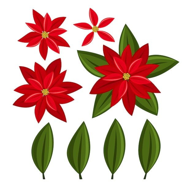 Christmas elements with set of poinsettia christmas flower. Premium Vector