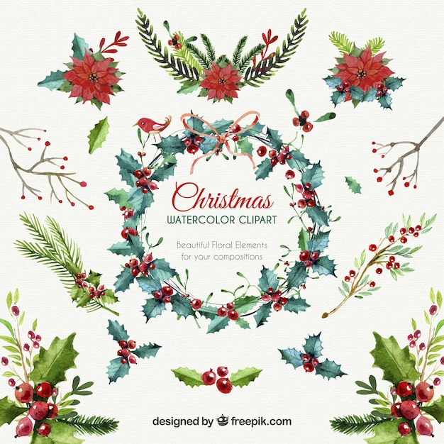 Christmas floral elements Free Vector