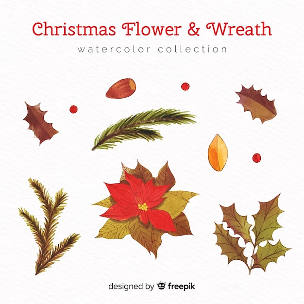 Christmas flower and wreath watercolor collection Free Vector