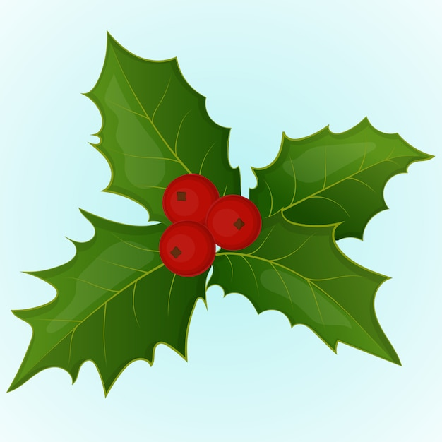 Premium Vector Christmas Holly Berry In Simple Cartoon Style Vector Illustration