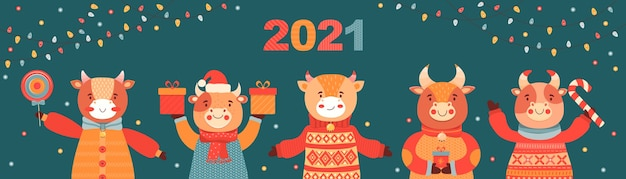 Christmas and new year banner. bulls with gifts and candy. symbol 2021 ox. festive vector background Premium Vector