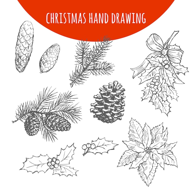 Christmas pine, fir tree branches and cones sketch Premium Vector