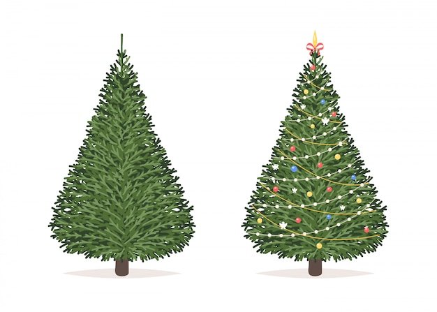Christmas tree before and after Premium Vector