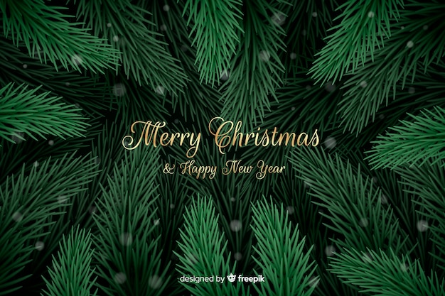 Christmas tree branches background Free Vector