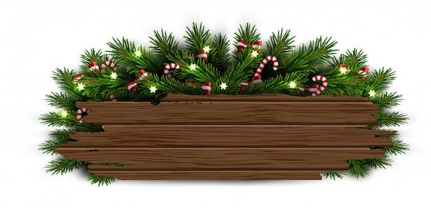Christmas tree branches Premium Vector
