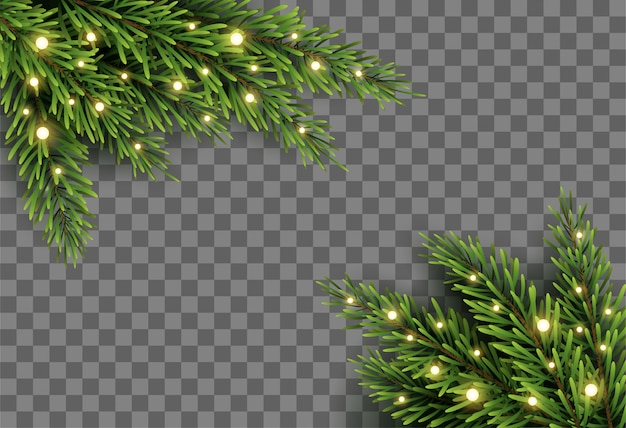 Christmas tree decor with fir branches and lights on transparent background Premium Vector