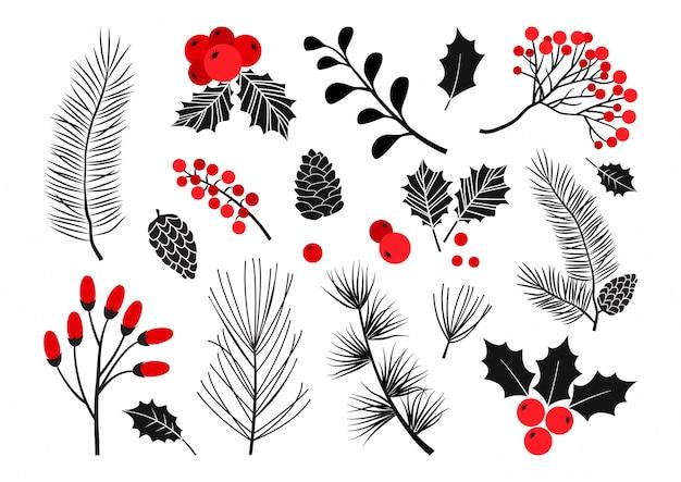 크리스마스 벡터 식물, 홀리 베리, 크리스마스 트리, 소나무, 마가목, 잎 가지, 휴일 장식, 겨울 기호. 빨간색과 검은 색 색상. 빈티지 자연 그림 프리미엄 벡터