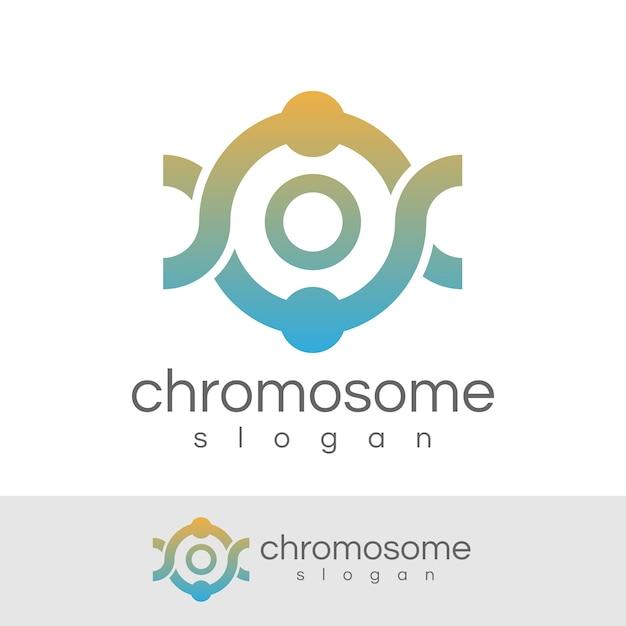 Chromosome initial letter o logo design Premium Vector
