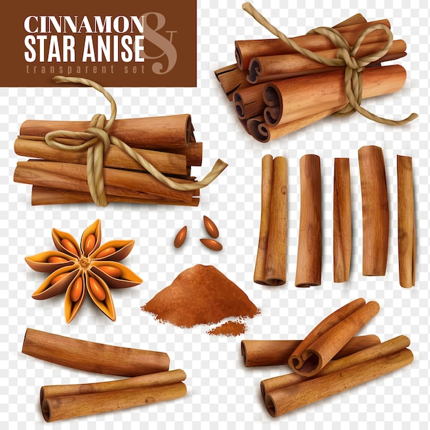Cinnamon star anise transparent set Free Vector