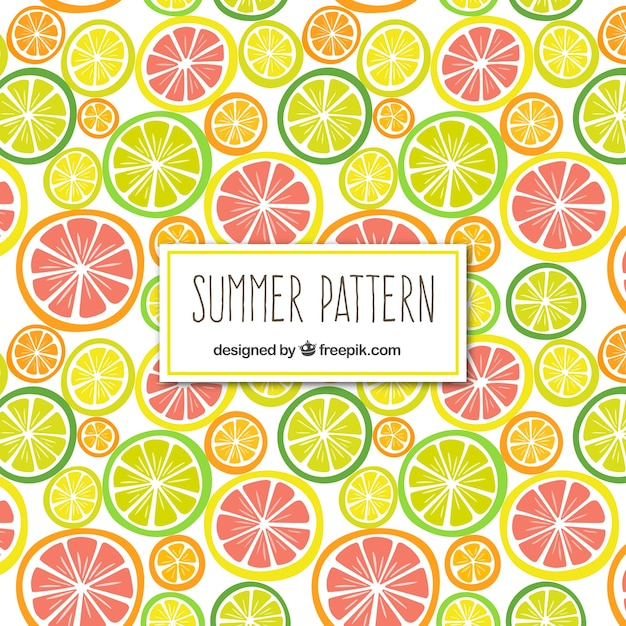 Citrus fruits pattern Free Vector