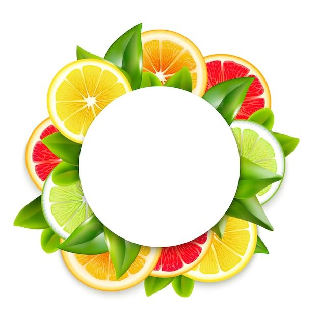 Citrus fruits slices arrangement round frame Free Vector