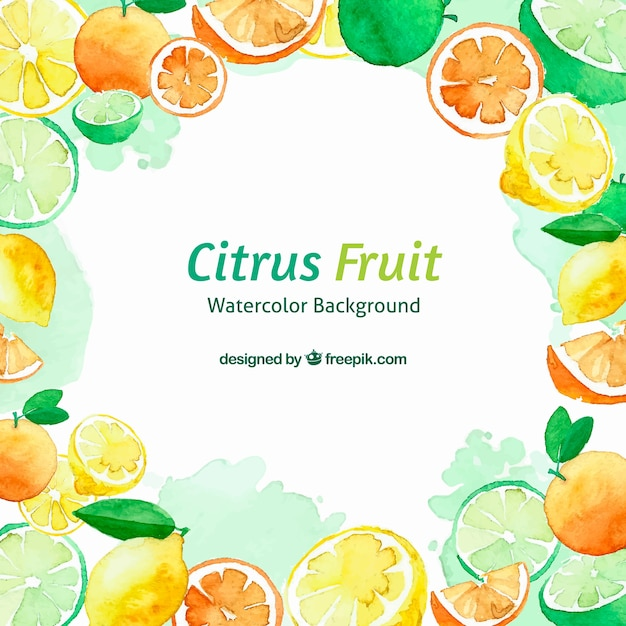 Citrus fruits watercolour background Free Vector