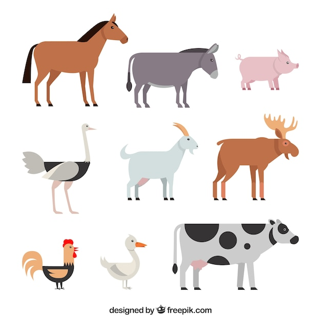 Classic pack of farm animals with flat design Free Vector