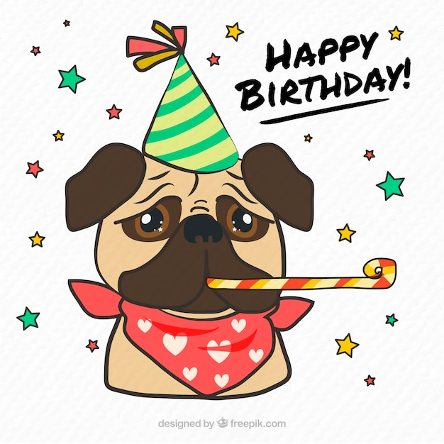 Classic pug with birthday accesories Free Vector