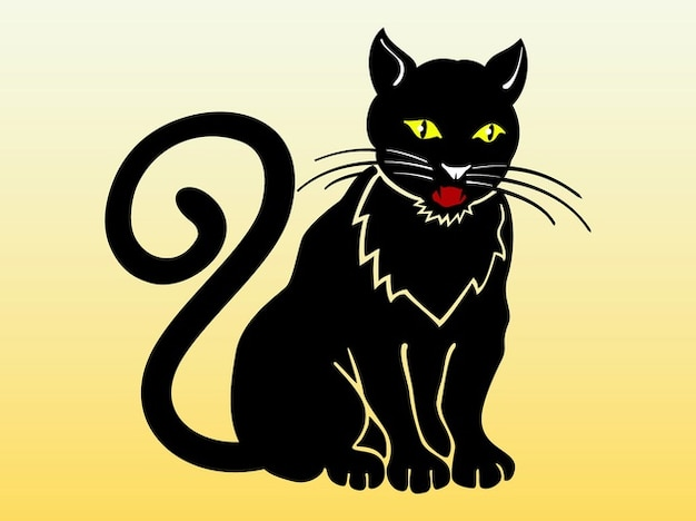 Clean black cat domesticated animal