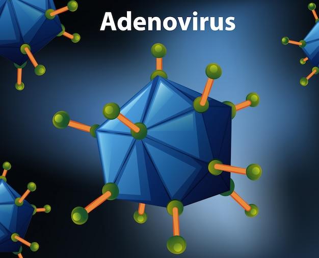 Close up diagram for adenovirus Free Vector