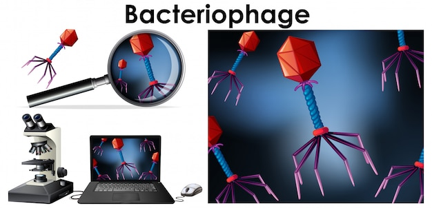 Close up isolated object of virus bacteriophage Free Vector