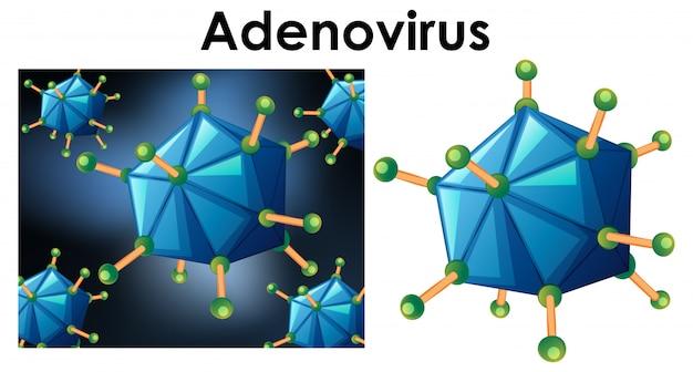 Close up isolated object of virus name adenovirus Free Vector