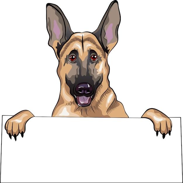 Крупным планом портрет собаки породы немецкая овчарка улыбается и держит плакат Premium векторы
