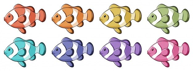 Clownfish in many colors Free Vector