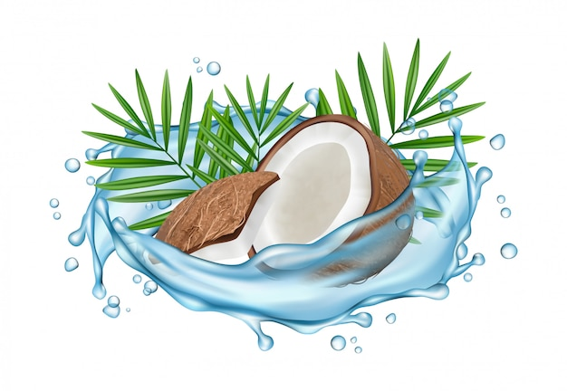 Coconut water  concept. realistic coconut, water splashes and palm leaves Premium Vector