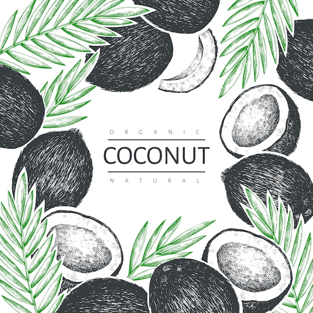 手のひらでココナッツの葉のデザインテンプレート。手描きベクトル食品イラスト。刻まれたスタイルのエキゾチックな植物。レトロな植物の熱帯の背景。 Premiumベクター