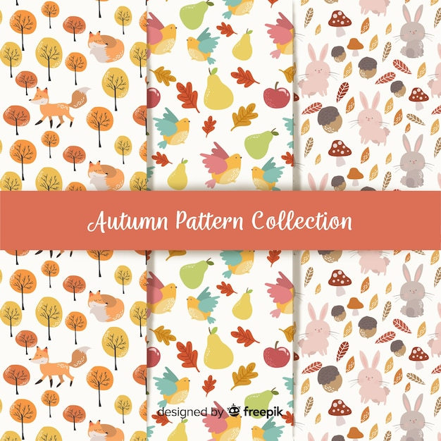 Collection of autumn patterns flat design Free Vector